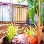 阿佐ヶ谷スマイルシェアハウスハウスの庭